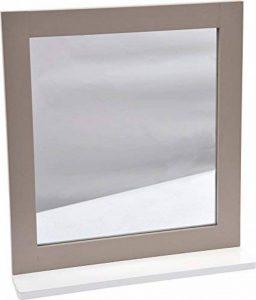 2 en 1 Miroir et Tablette de salle de bain - Esprit Charme de la marque TENDANCE image 0 produit