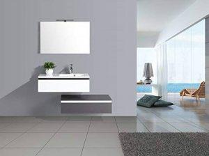 Jindoli Meuble Salle de Bain Simple Vasque 2 tiroirs 90cm décalés Gris Blanc laqué Aquamare ! Coup de ❤ ! de la marque Jindoli image 0 produit