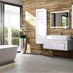 meuble de salle de bain avec deux vasques TOP 11 image 1 produit