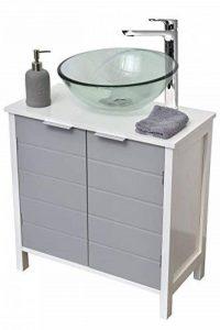 TENDANCE Meuble Dessous de lavabo Evier - 2 Portes 1 étagère - Coloris Blanc Gris de la marque TENDANCE image 0 produit
